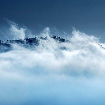 Träd ovan molnen Gran Canaria Foto: Roger Vikström